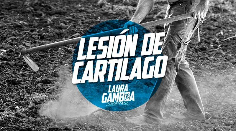 Lesion cartilago Fisioterapeuta Manizales Laura Gamboa