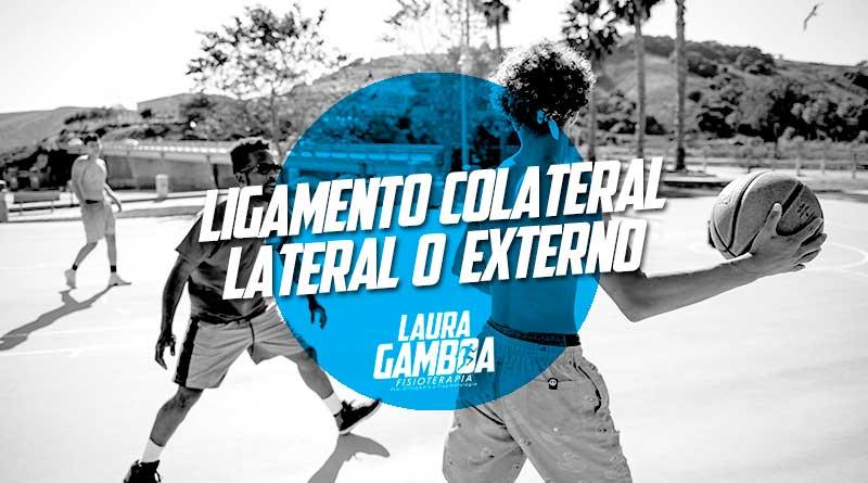 Ligamento Colateral Lateral Externo Fisioterapeuta Laura Gamboa