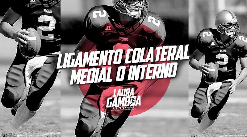 Ligamento Colateral Medial Interno Fisioterapeuta Laura Gamboa